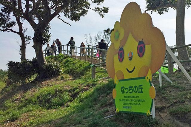 伊良湖菜の花ガーデン なっちの丘の登り口