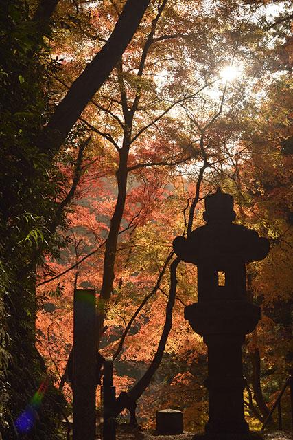 香嵐渓の紅葉 香積寺の石段より