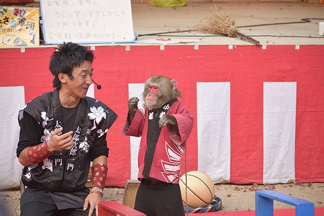 香嵐渓の紅葉 日光さる軍団 太郎次郎一門 jr.2コンビによる公演
