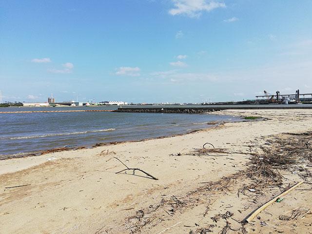 愛知県半田市 亀崎海浜緑地の砂浜 その1