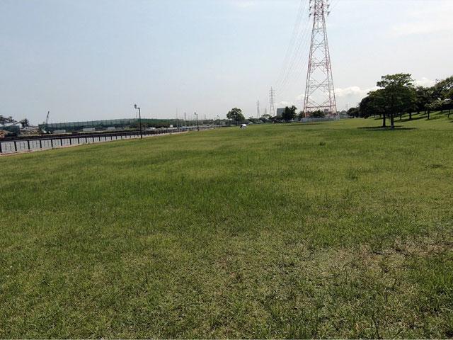 愛知県半田市 亀崎海浜緑地の芝生