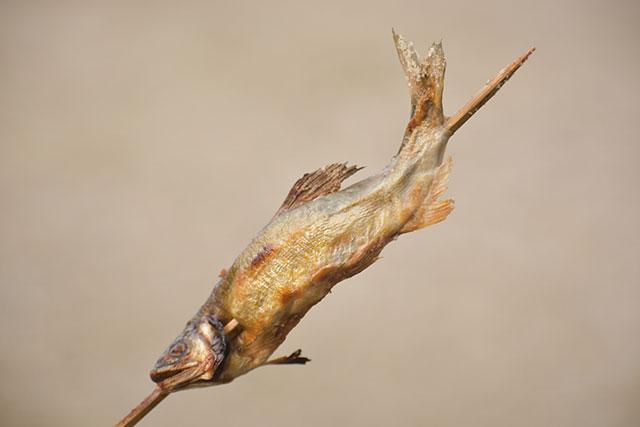 香嵐渓の紅葉 鮎の塩焼き