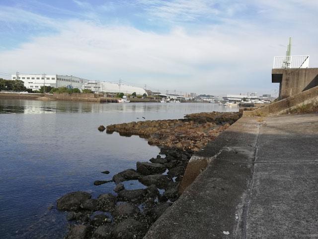 十ヶ川河口付近の水門の様子(干潮時)